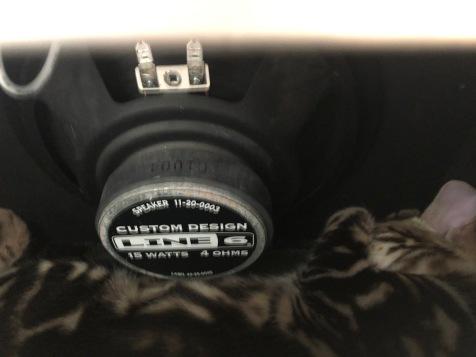 Antas dentro del amplificador